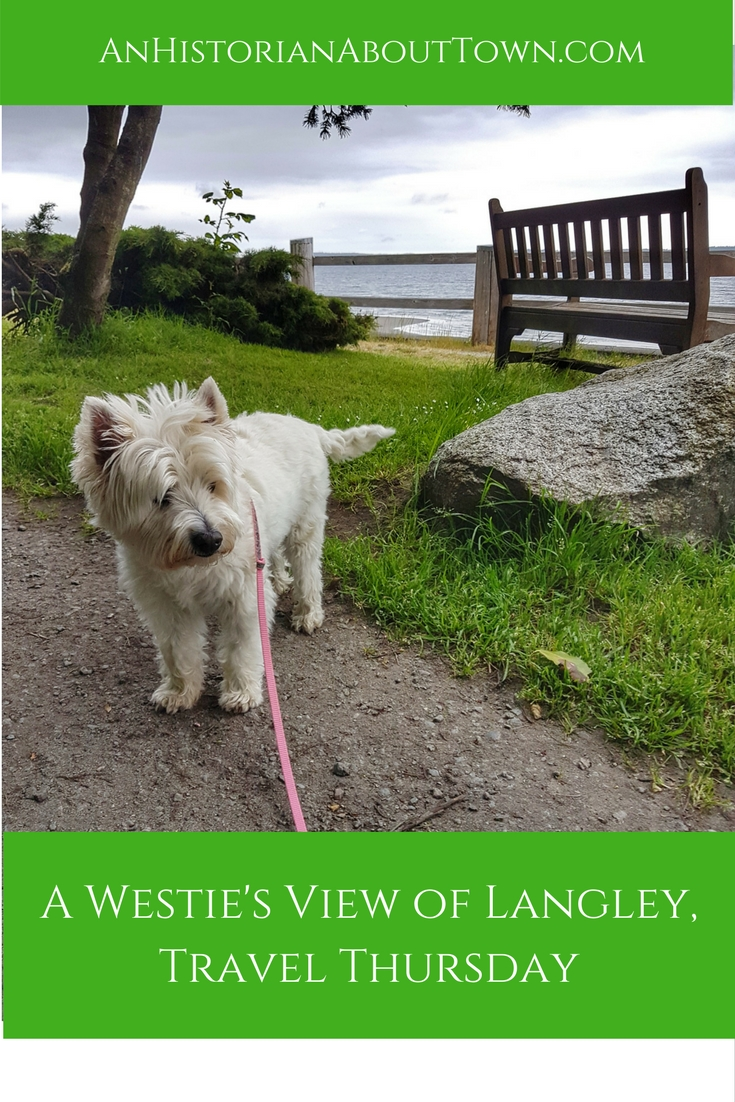 A Westie's View of Langley,Travel Thursday