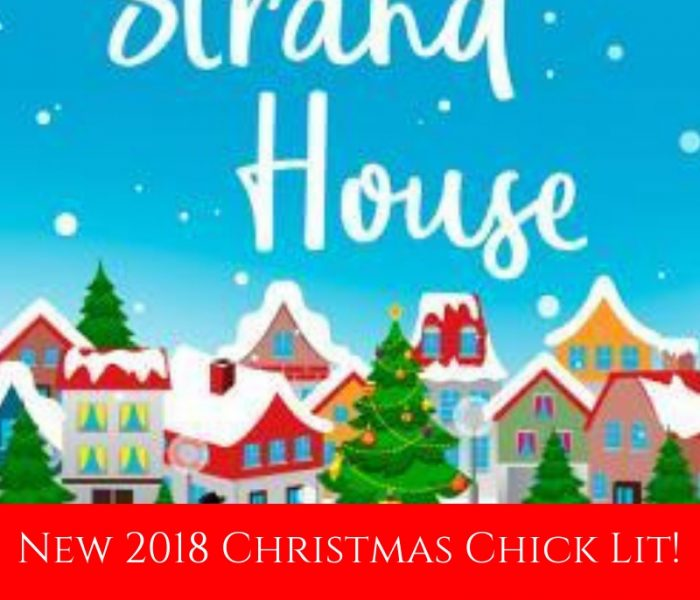 3 New 2018 Christmas Chick Lit Books!